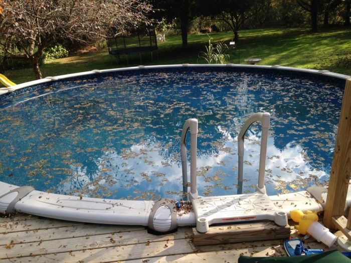 Drinking dirty pool water will make you sick.