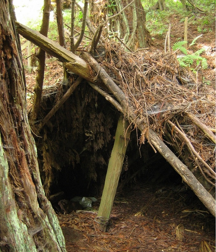 A basic lean to survival shelter.